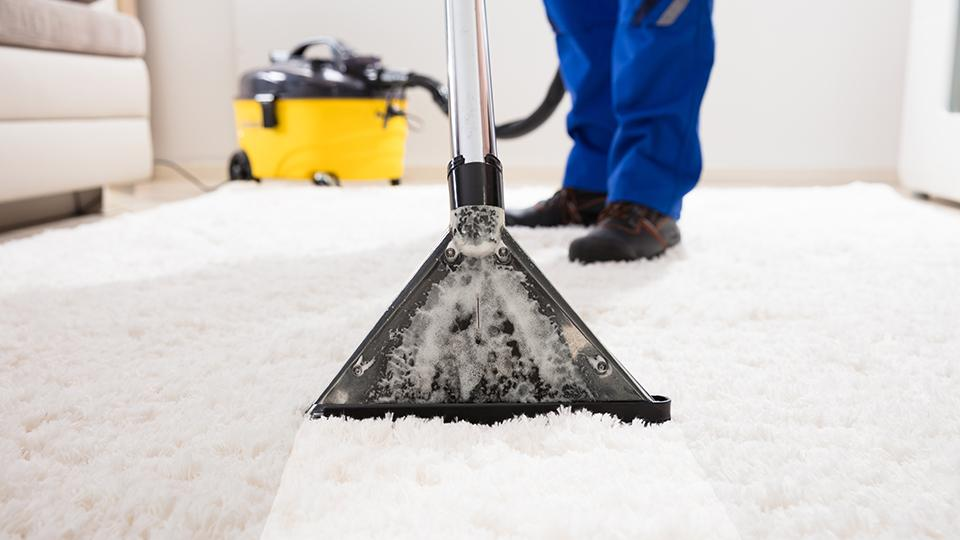 Great Carpet Cleaning