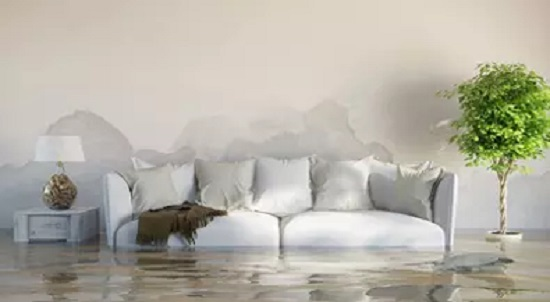 How Can You Tell If Your Home Has Water Damage?